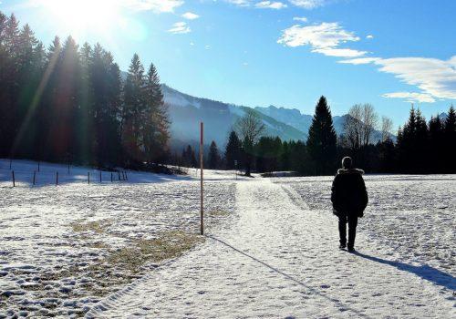 winter-234851_1920